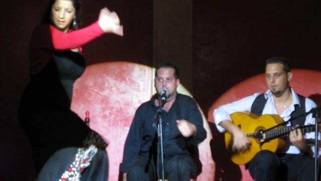 Liceo Flamenco, Malaga